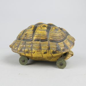 Tortoise shell on wheels