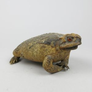 Large Toad (antique)