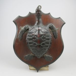Turtle mounted on shield