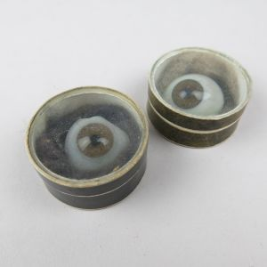 Glass eyes (human) in collector's boxes