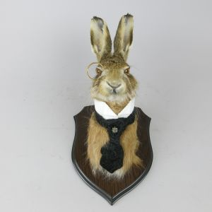 Hare with monocle!